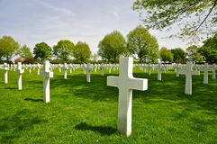 Crosses at Netherlands American Cemetery Margraten Royalty Free Stock Photography
