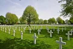 Crosses at Netherlands American Cemetery Margraten Royalty Free Stock Images