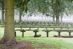 Crosses at cemetery in autumn mist Stock Images