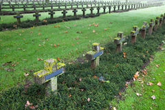 Crosses at cemetery in autumn mist Stock Photo