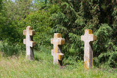 Crosses on cemetery in forest Royalty Free Stock Photo