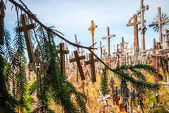 Crosses detail at the hill of crosses, Lithuania Stock Photo