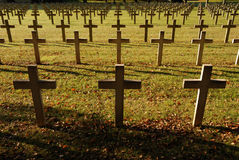 Crosses at French soldiers cemetery Stock Photo