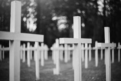 Crosses at the military  cemetery. Stock Photo