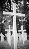 Crosses at the military  cemetery. Royalty Free Stock Photos