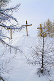 Crosses the snow stock image