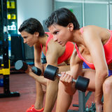 Crossfit fitness weight lifting Dumbbell woman at mirror Royalty Free Stock Photo