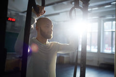 Crossfit Workout on Rings Royalty Free Stock Photography