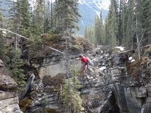 Crossing a canyon on a tightrope. A young man fixing his highwire before attempting to cross johnston canyon at banff national park stock footage