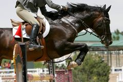 Crossing Hurdles - Equestrian. Equestrian horse and rider jump over a tall obstacle in a competition - can represent milestones, successes, crossing life's royalty free stock images