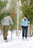 Crossing Paths. Active singles cross paths on cross-country skis in a Canadian forest Royalty Free Stock Photo