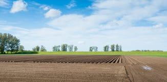 Crossing potato ridges in springtime Stock Photos