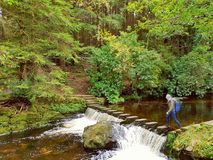 Woman Walking Over Stepping Stones Across River. Crossing River Found Deep In Tullymore Forest Royalty Free Stock Photos
