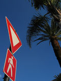 Crossing sign and palm trees. Pedestrian crossing and yield signs with palm trees in the background Stock Images