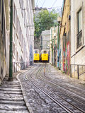 The Crossing Trams royalty free stock images