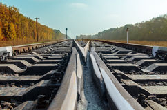 Crossing of two railroads Royalty Free Stock Photos