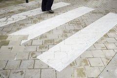 Crossing zebra crossing Royalty Free Stock Image