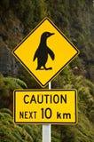 crossingpingvin Arkivfoto