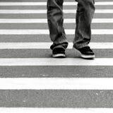 crossingsebra fotografering för bildbyråer