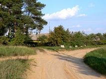 Crossroad. Homestead in the middle of split of road  with rocks and bushes in its basis Stock Photo