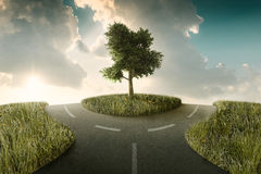 Crossroad. Road bifurcation with tree beetwin in a countryside landscape Royalty Free Stock Photo