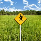 Crossroad sign with landscape background Royalty Free Stock Photo