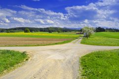 Crossroads. Junction in beautiful landscape stock photography