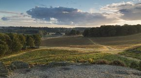 Crossroads At Bradgate. Royalty Free Stock Photography
