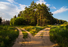 At the crossroads. Fork. Two roads. Royalty Free Stock Photo