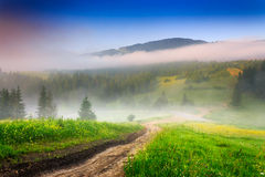 Crossroads in the morning mist in mountains. Crossroads of mountain roads near the woods and glade in the morning mist stock photos
