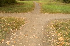 The crossroads of paths in the city autumn Park autumn Stock Image