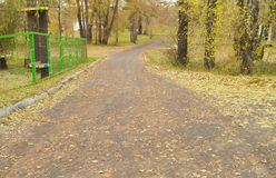 The crossroads of paths in the city autumn Park autumn.  Stock Photography