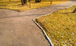 The crossroads of paths in the city autumn Park autumn.  Stock Images