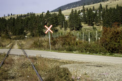 Crossroads. Railroad tracks meet the Road in the Valley Royalty Free Stock Images