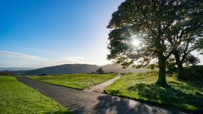 Crossroads with sun shining through tree. A Crossroads of a main road and smaller less traveled road with the sun shining through a tree Royalty Free Stock Photos