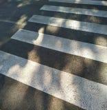 Crosswalk зебры стоковое фото rf
