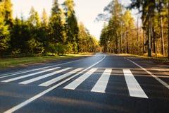 crosswalk Στοκ Εικόνα