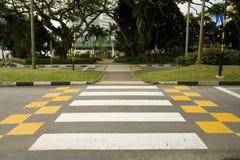 crosswalk Zdjęcie Royalty Free