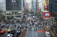 Free Crosswalk In Shibuya, Tokyo Stock Images - 14682264