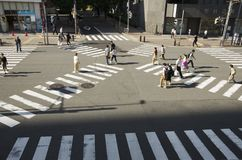 Crosswalk in Nagoya, Japan stock photography