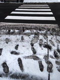 Crosswalk slush. Pedestrian crossing in winter. Royalty Free Stock Image