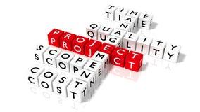 Crossword łamigłówka z kostka do gry pokazuje zarządzania projektem pojęcie Fotografia Stock