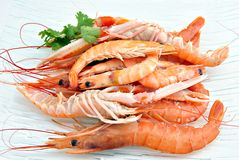 Crostacei Immagine Stock