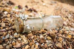 Crostacei su una bottiglia Fotografia Stock