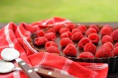 Crostata del cioccolato con il lampone Immagine Stock