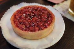 Crostata del mirtillo rosso Fotografia Stock