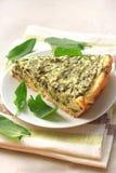 Crostata dell'acetosa con il formaggio di capra Fotografia Stock