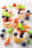 Crostini用烤长方形宝石,乳脂干酪和莓果 免版税库存照片
