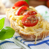 Crostini. With cheese and tomatoes on kitchen towel Stock Image