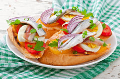 Crostini with anchovies, tomatoes and egg Royalty Free Stock Photos